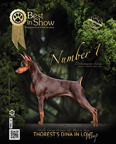 Revista Best in Show 2
